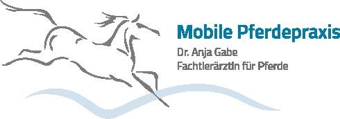 A. Gabe Logo